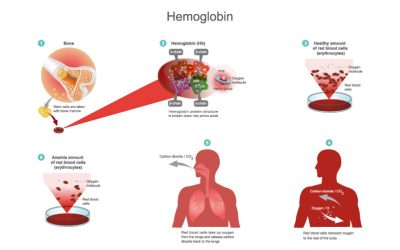Low Haemoglobin in hindi